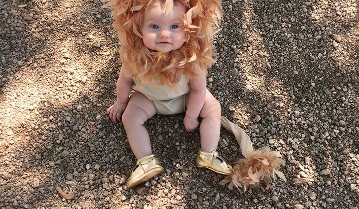 Lion Costume DIY