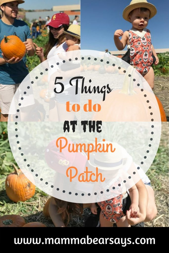 The pumpkin patch has something for everyone. It is full of so many activities, read our favorite 5 pumpkin patch to do's.
