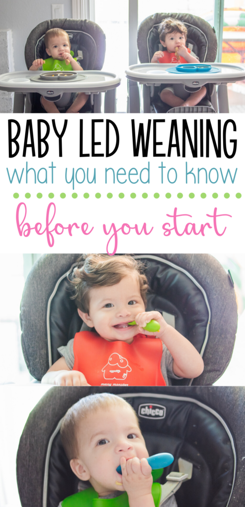 babies baby led weaning