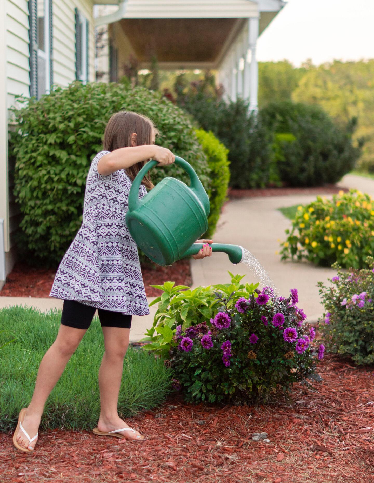 grow a garden for summer bucketlist